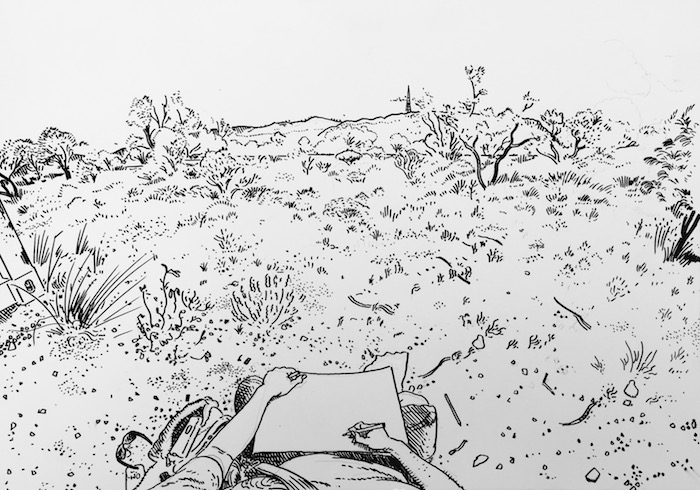 Drawing of outback bush landscape, drawn from the artists perspective