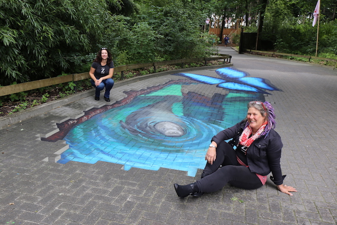 3D chalk art for manatee exhibit by Jenny McCracken
