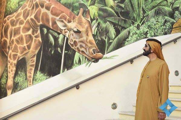 Sheikh Mohammed bin Rashid visits giraffes at Dubai Canvas