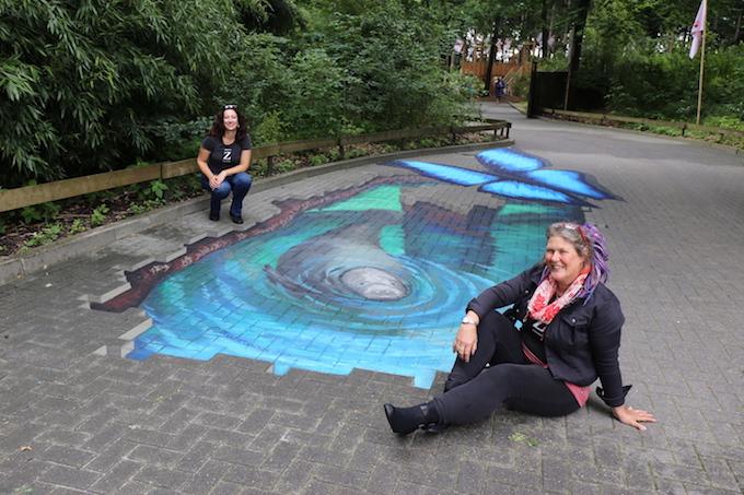 3D chalk art for manatee exhibit by Jenny McCracken
