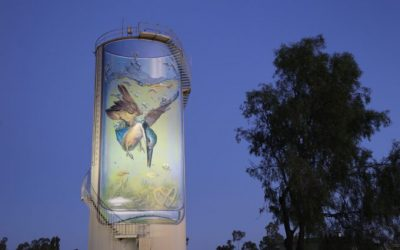 Gulargambone Water Tower Art receives Australia Post's stamp of approval