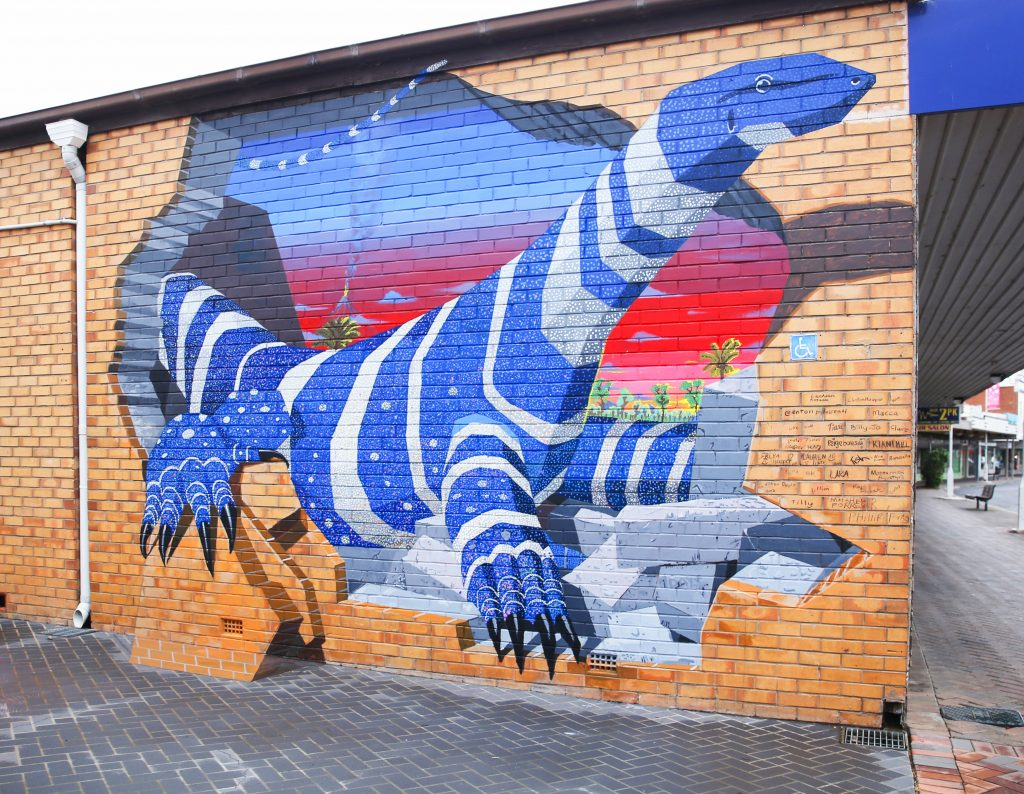 3D Street Art Mural Forbes Youth Workshop Anton Pulvirenti Goanna Zestei