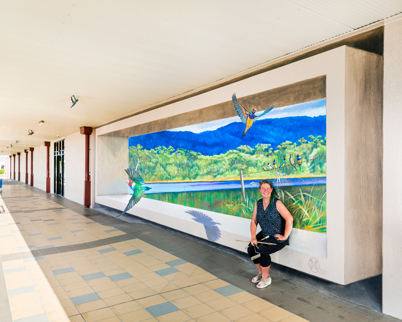 Mareeba Gouldian Finch Mural Jenny Mccracken Zestei Photo By Jen Frei