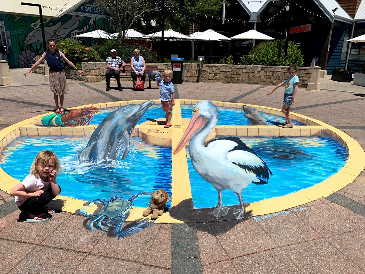 poses for photo with dolphin, seal and pelican