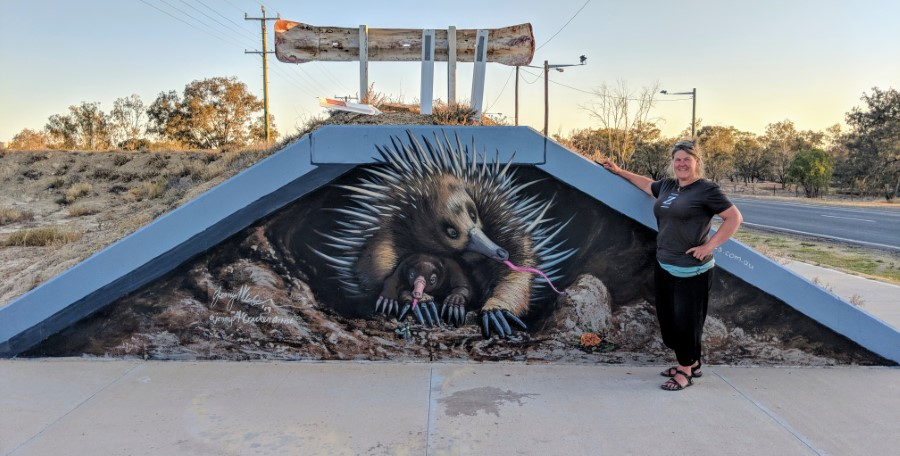 echidna mural on water levy in Brewarrina