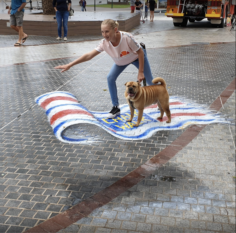 3d chalk artwork beach towel dog kelly collins pose