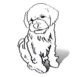 thumbnail_3d_colouring_square_dog