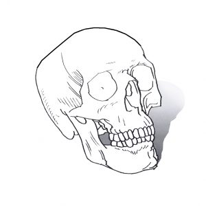 thumbnail_3d_colouring_square_skull