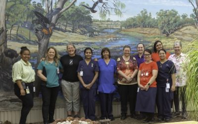 Brewarrina Fish Traps mural brings joy to palliative care patients