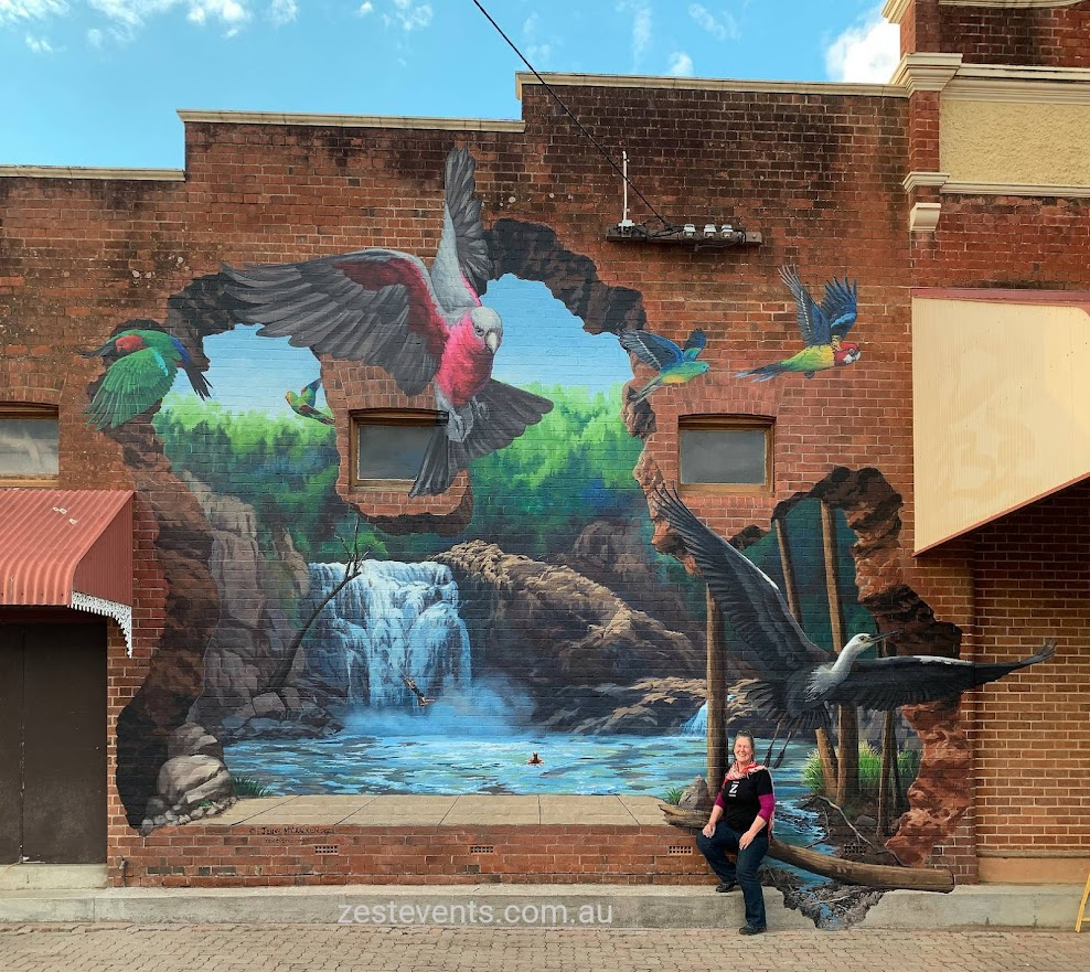 australian birds fly out of waterfall in hole in the wall 3d mural