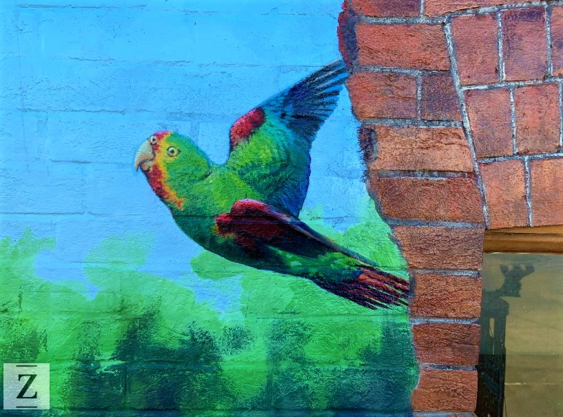 painting-of-swift-parrot